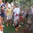 Smrikva Bowl Olive Tree Cerimony