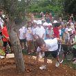 Ambassadors Old Olive Tree planting